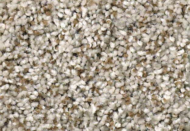 Garden Estate B Berber by Resista® Soft Style