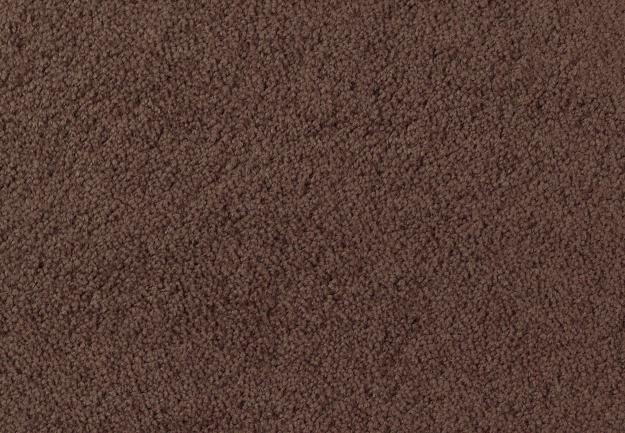 Textured Carpet by Star Values