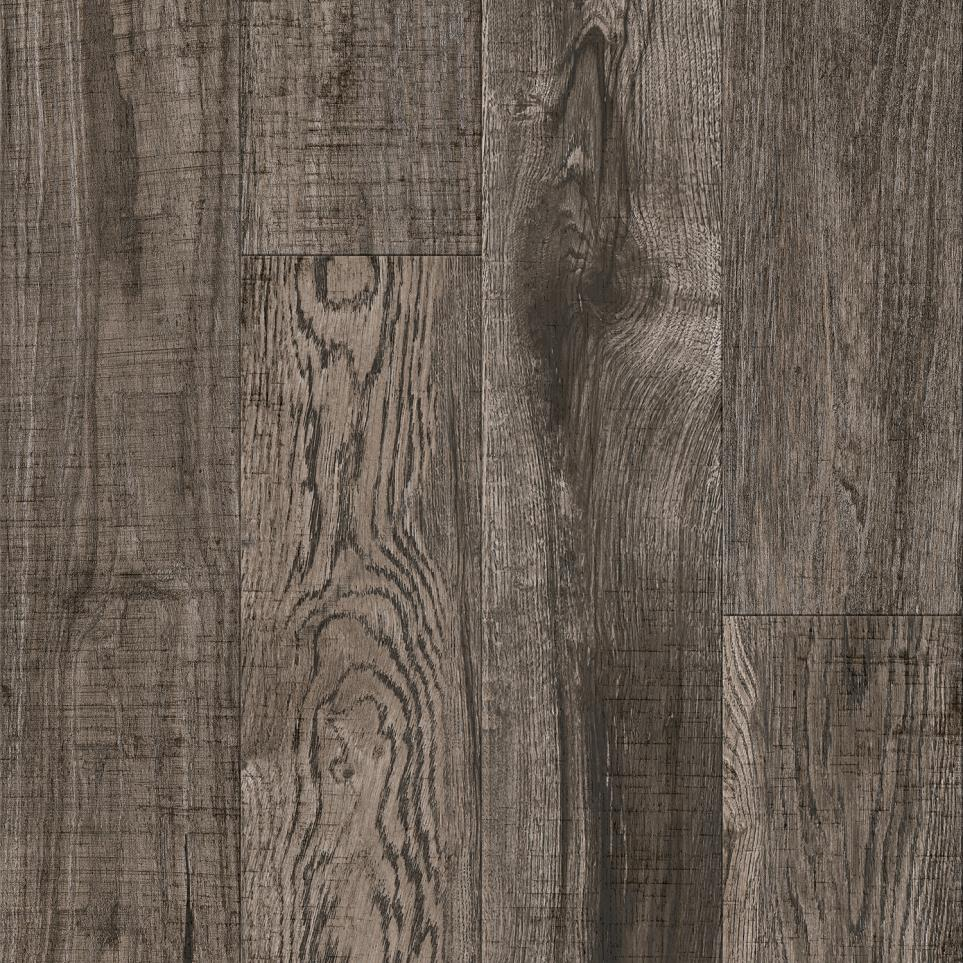 Engler - Hickory by Spotlight Values - Bark